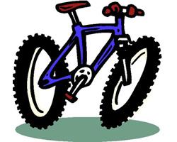 Семь бед – один велосипед