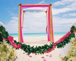 Особенности проведения летней свадьбы